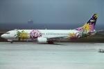 tassさんが、羽田空港で撮影したスカイネットアジア航空 737-46Qの航空フォト(飛行機 写真・画像)