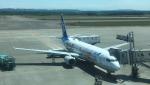 737dolphinさんが、新千歳空港で撮影した全日空 737-800の航空フォト(写真)