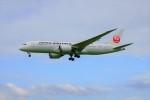 yoshibouさんが、成田国際空港で撮影した日本航空 787-8 Dreamlinerの航空フォト(写真)
