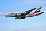 yoshibouさんが、成田国際空港で撮影したエミレーツ航空 A380-861の航空フォト(写真)