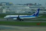 FRTさんが、福岡空港で撮影した全日空 737-881の航空フォト(飛行機 写真・画像)