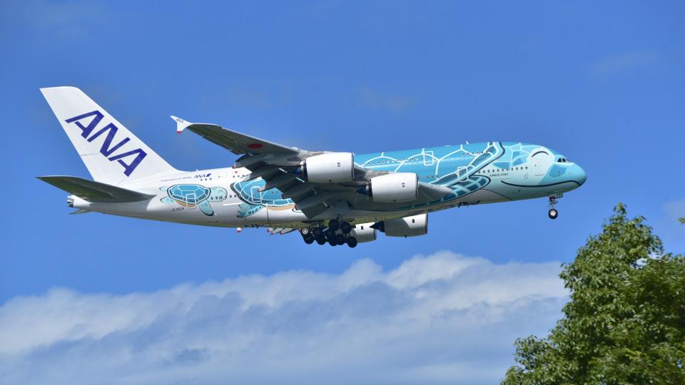 パンダさんの全日空 Airbus A380 (JA382A) 航空フォト