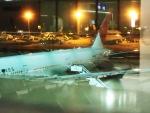 akinarin1989さんが、フランクフルト国際空港で撮影した日本航空 777-346/ERの航空フォト(写真)