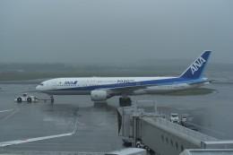 kumagorouさんが、新千歳空港で撮影した全日空 777-281/ERの航空フォト(写真)