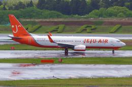 PASSENGERさんが、成田国際空港で撮影したチェジュ航空 737-8ALの航空フォト(飛行機 写真・画像)
