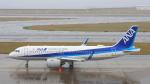 Cassiopeia737さんが、中部国際空港で撮影した全日空 A320-271Nの航空フォト(写真)