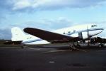 tassさんが、マイアミ国際空港で撮影した不明 DC-3の航空フォト(飛行機 写真・画像)
