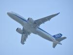 空が大好き!さんが、関西国際空港で撮影した全日空 A320-271Nの航空フォト(写真)