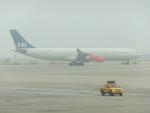 keitsamさんが、上海浦東国際空港で撮影したスカンジナビア航空 A340-313Xの航空フォト(飛行機 写真・画像)