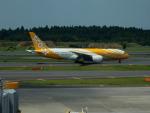 kiyohsさんが、成田国際空港で撮影したスクート 787-8 Dreamlinerの航空フォト(写真)