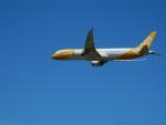 kiyohsさんが、成田国際空港で撮影したスクート 787-9の航空フォト(写真)