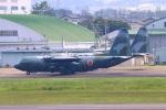 reonさんが、名古屋飛行場で撮影した航空自衛隊 C-130H Herculesの航空フォト(写真)