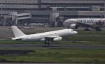 どらいすたーさんが、羽田空港で撮影した中国企業所有 A319-133CJの航空フォト(写真)