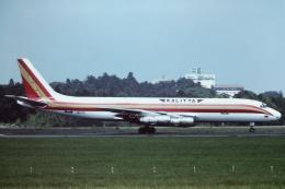 tassさんが、成田国際空港で撮影したカリッタ エア DC-8-55(F)の航空フォト(写真)