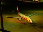 kiyohsさんが、羽田空港で撮影した上海航空 737-86Nの航空フォト(写真)