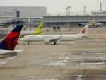 kiyohsさんが、関西国際空港で撮影した中国東方航空 A321-211の航空フォト(飛行機 写真・画像)