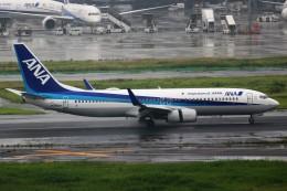 ばっきーさんが、羽田空港で撮影した全日空 737-881の航空フォト(写真)