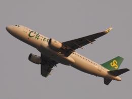 FT51ANさんが、関西国際空港で撮影した春秋航空 A320-214の航空フォト(飛行機 写真・画像)