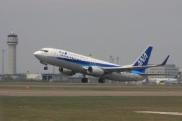 Hiro-hiroさんが、新千歳空港で撮影した全日空 737-881の航空フォト(飛行機 写真・画像)