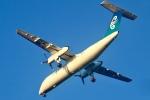 パピヨンさんが、ホキティカ空港で撮影したエア・ネルソン DHC-8-311Q Dash 8の航空フォト(写真)