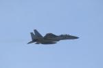 ANA744Foreverさんが、那覇空港で撮影した航空自衛隊 F-15DJ Eagleの航空フォト(写真)