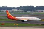 T.Sazenさんが、成田国際空港で撮影した海南航空 737-84Pの航空フォト(飛行機 写真・画像)