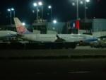 kiyohsさんが、台湾桃園国際空港で撮影したチャイナエアライン 737-809の航空フォト(写真)