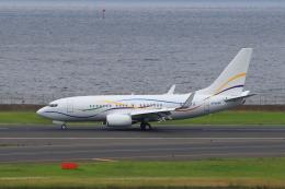 たまさんが、羽田空港で撮影したSASインスティチュート 737-7BC BBJの航空フォト(飛行機 写真・画像)