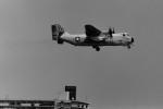 ヒロリンさんが、厚木飛行場で撮影したアメリカ海軍 C-2 Greyhoundの航空フォト(飛行機 写真・画像)
