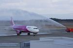 長崎空港 - Nagasaki Airport [NGS/RJFU]で撮影されたピーチ - Peach [MM/APJ]の航空機写真