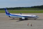 Cスマイルさんが、秋田空港で撮影した全日空 737-881の航空フォト(写真)