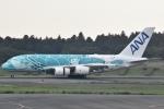 FLYING  HONU好きさんが、成田国際空港で撮影した全日空 A380-841の航空フォト(写真)