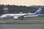 FLYING  HONU好きさんが、成田国際空港で撮影した全日空 787-8 Dreamlinerの航空フォト(写真)