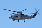 yabyanさんが、名古屋飛行場で撮影した海上自衛隊 SH-60Kの航空フォト(写真)