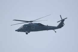 kumagorouさんが、仙台空港で撮影した航空自衛隊 UH-60Jの航空フォト(飛行機 写真・画像)