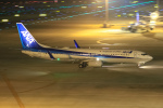 ryu330さんが、中部国際空港で撮影した全日空 737-881の航空フォト(写真)