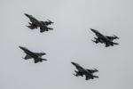 デンマーク空軍