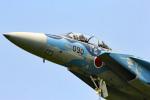 さかなやさんが、小松空港で撮影した航空自衛隊 F-15DJ Eagleの航空フォト(写真)