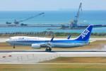 ちっとろむさんが、那覇空港で撮影した全日空 737-881の航空フォト(写真)