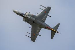 チャッピー・シミズさんが、フェアフォード空軍基地で撮影したスペイン空軍 EAV-8B Matador II+の航空フォト(飛行機 写真・画像)