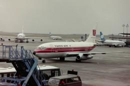ヒロリンさんが、ブリュッセル国際空港で撮影したチュニスエア 737-2H3/Advの航空フォト(飛行機 写真・画像)