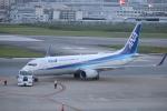 flyflygoさんが、福岡空港で撮影した全日空 737-881の航空フォト(写真)