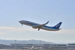 監督さんが、熊本空港で撮影した全日空 737-881の航空フォト(写真)