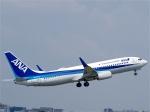 goshiさんが、伊丹空港で撮影した全日空 737-881の航空フォト(写真)