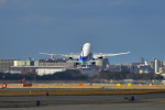 監督さんが、福岡空港で撮影した全日空 777-281の航空フォト(飛行機 写真・画像)