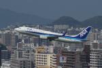 Yossy96さんが、福岡空港で撮影した全日空 737-881の航空フォト(写真)