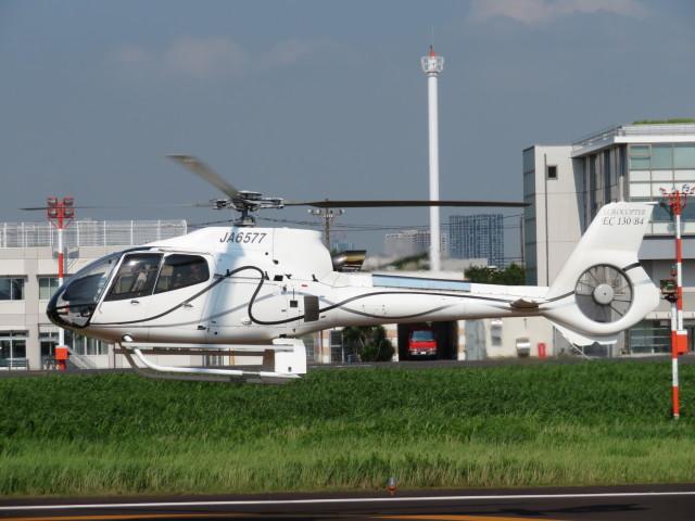 ランチパッドさんが、東京ヘリポートで撮影したユーロコプタージャパン EC130B4の航空フォト(飛行機 写真・画像)