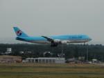 kiyohsさんが、フランクフルト国際空港で撮影した大韓航空 747-8B5の航空フォト(飛行機 写真・画像)