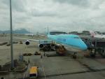 kiyohsさんが、香港国際空港で撮影した大韓航空 747-8B5の航空フォト(飛行機 写真・画像)