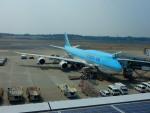 kiyohsさんが、成田国際空港で撮影した大韓航空 747-8B5の航空フォト(飛行機 写真・画像)